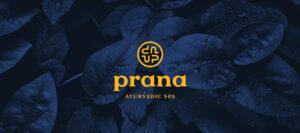 The Prana Logo Story